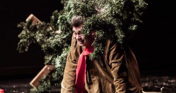 """""""Το δέντρο"""" με το Νίκο Μαγδαληνό στο Θέατρο Αθήναιον"""
