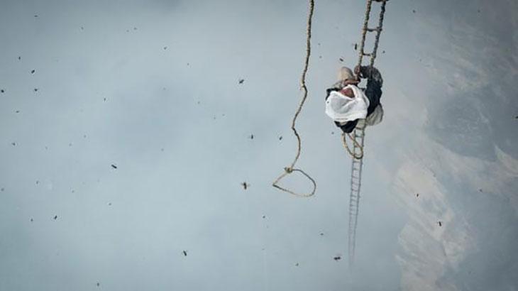 Γευσιγνωσίες Φεστιβάλ Ντοκιμαντέρ │ Ο τελευταίος κυνηγός μελιού