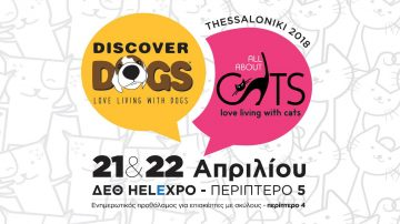 Discover Dogs - All About Cats Θεσσαλονίκη 2018