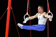 Παγκόσμιο Πρωτάθλημα Ενόργανης Γυμναστικής