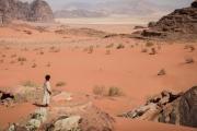 Ο Λύκος της Ερήμου (2014)