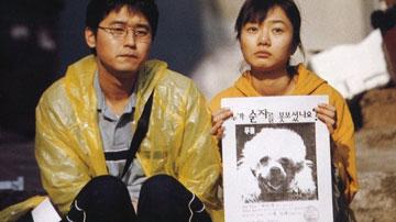 Απόλλων» για την Ταινία «Σκύλος που Γαβγίζει»