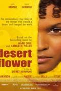 Το Λουλούδι της Ερήμου (Desert Flower)