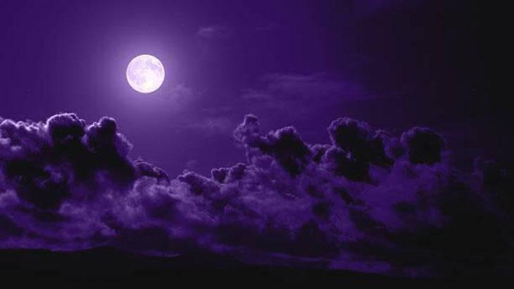 «Η Σονάτα του Σεληνόφωτος»