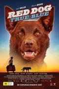Ο Κόκκινος Σκύλος: Ένας Πιστός Φίλος (Red Dog: True Blue)