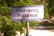 Χαιρέτα μου τον Πλάτανο